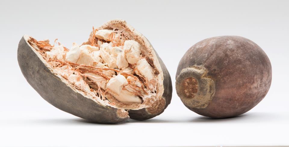 Плоды баобаба