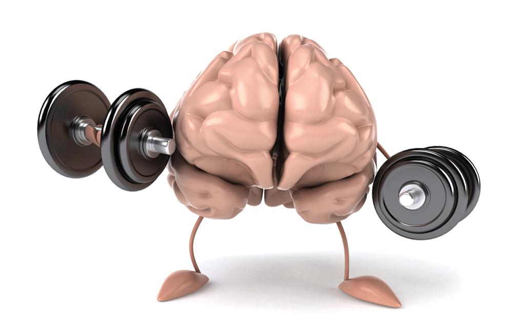Положительно влияет на мозговую деятельность