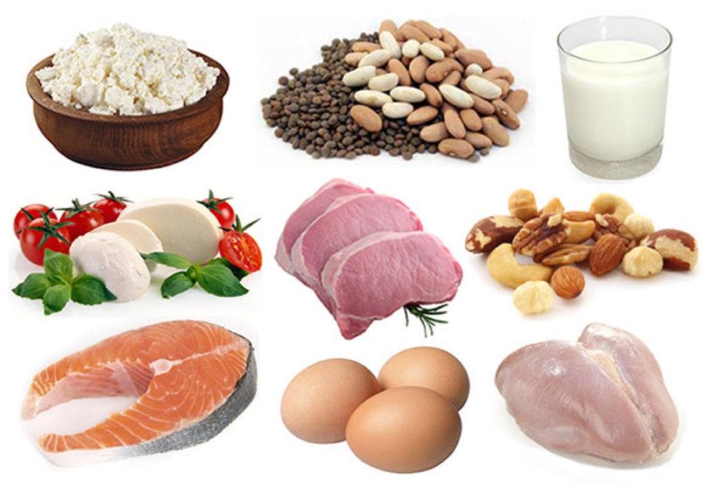 обеспечить картинки продуктов содержащие белок человека