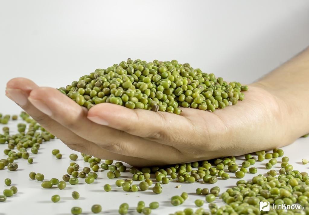 Зеленые бобы нужно обрабатывать термическим путем