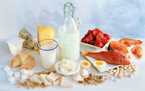 Список продуктов белковая диета