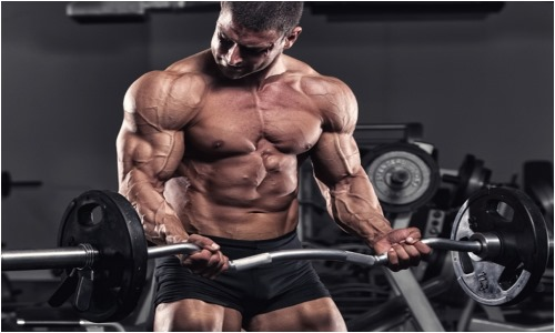 biceps-krivoy