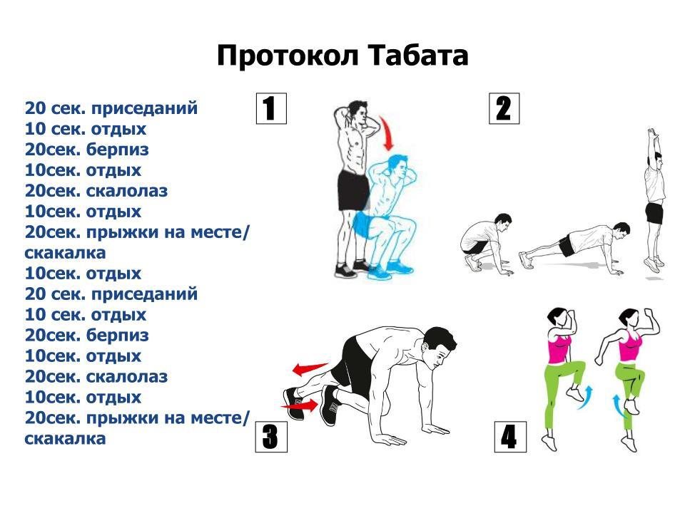 табата упражнения протокол тренировок