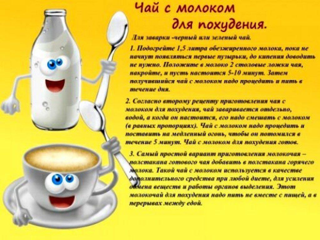 Молокочай и его польза в диете