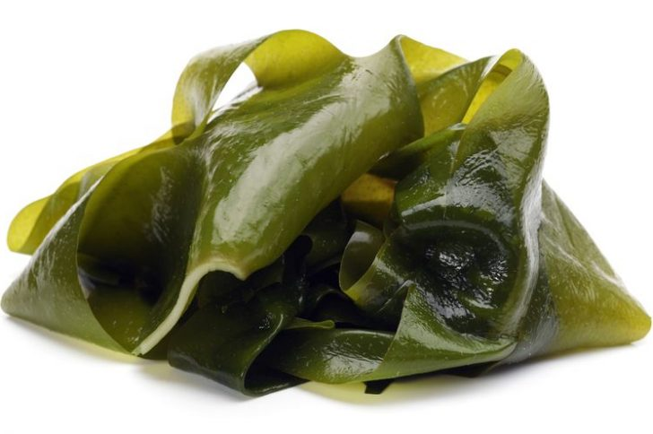 Ламинария – бурая водоросль