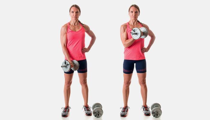 Упражнения на трицепс с гантелями в домашних условиях и тренажерном зале