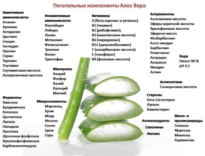 Алоэ для похудения - отзывы и результаты: как похудеть с помощью сока Aloe Vera в домашних условиях