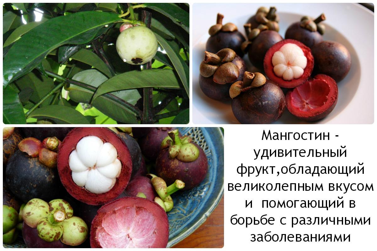 Свойства фруктов
