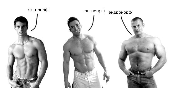 Советы по тренировке для эндоморфа