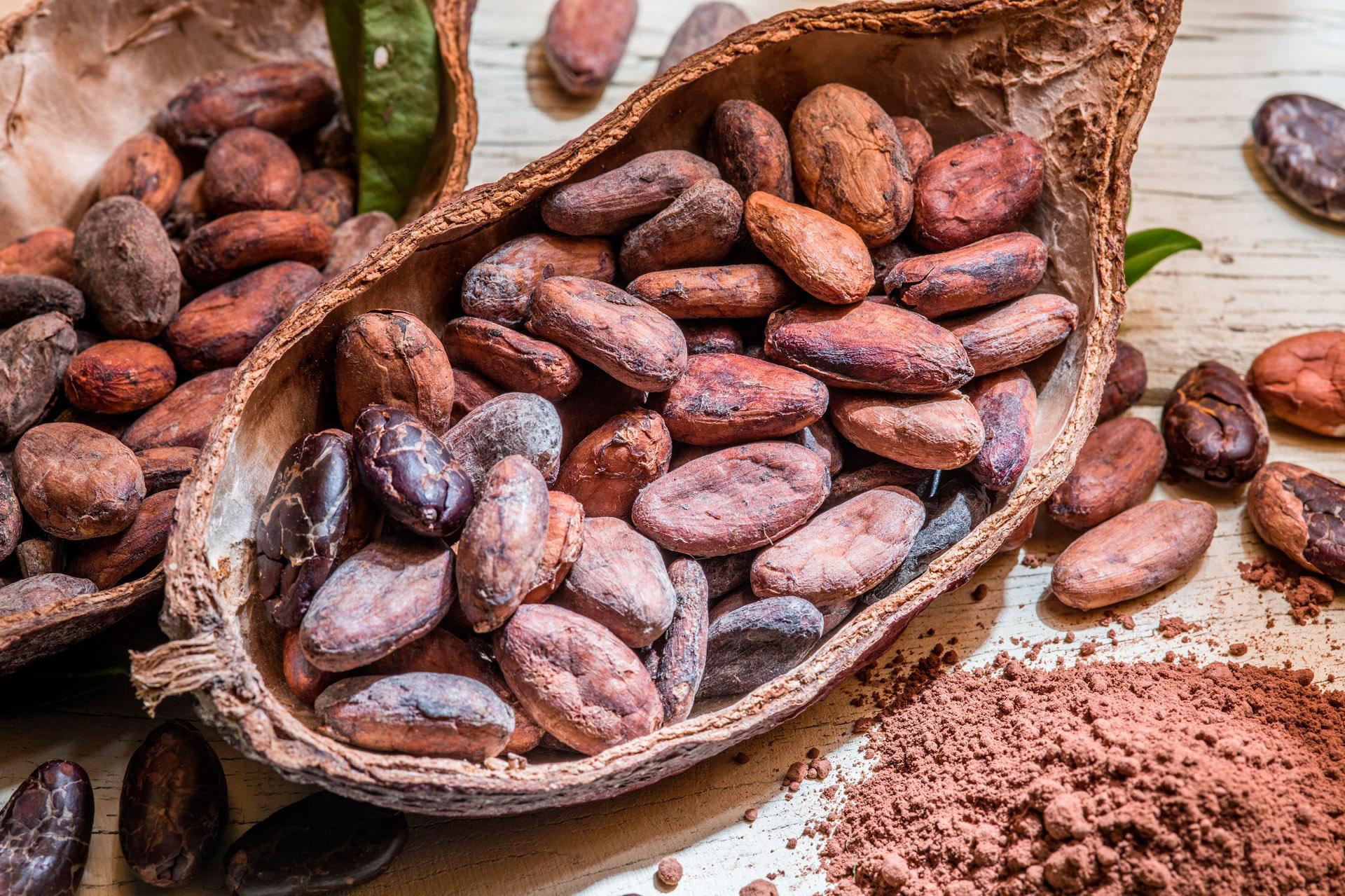 Какао-бобы Криолло