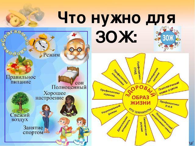 Здоровый образ жизни (ЗОЖ)