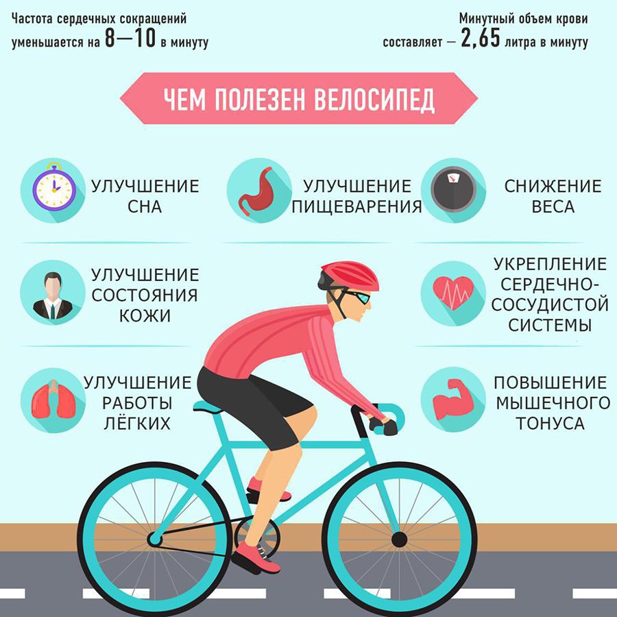 Сколько калорий сжигается при езде на велосипеде