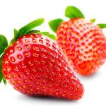 Правила и нюансы проведения белковой диеты для снижения веса