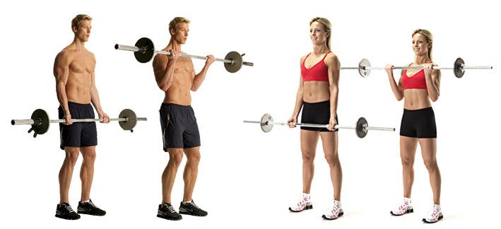 biceps-1