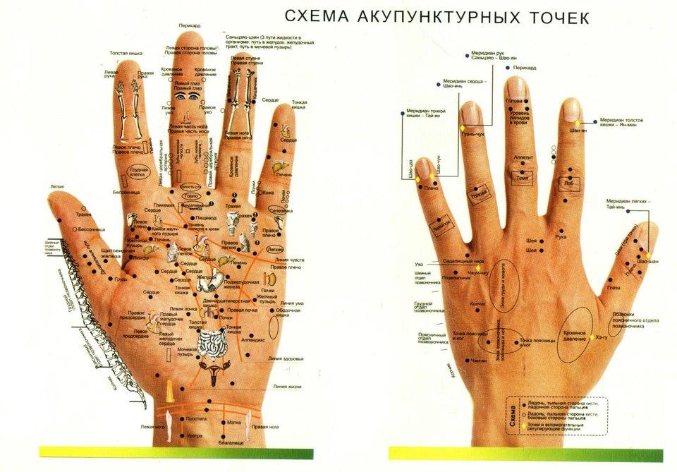 Tochki-akupunktury-na-kistyah-ruk