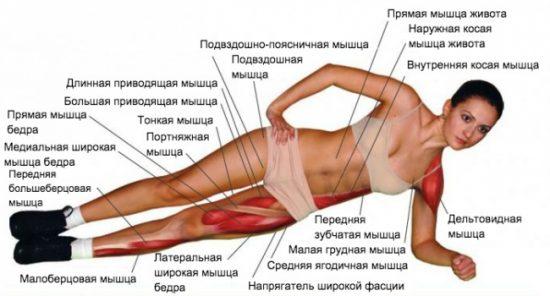 Планка для похудения