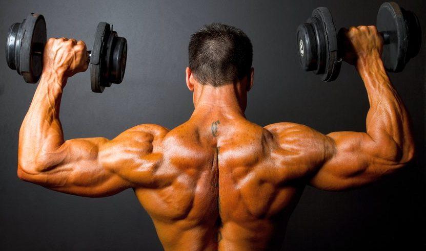 Прокачка спины в тренажерном зале: упражнения