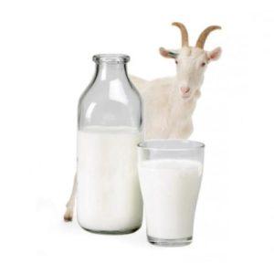козье молоко для грудничка