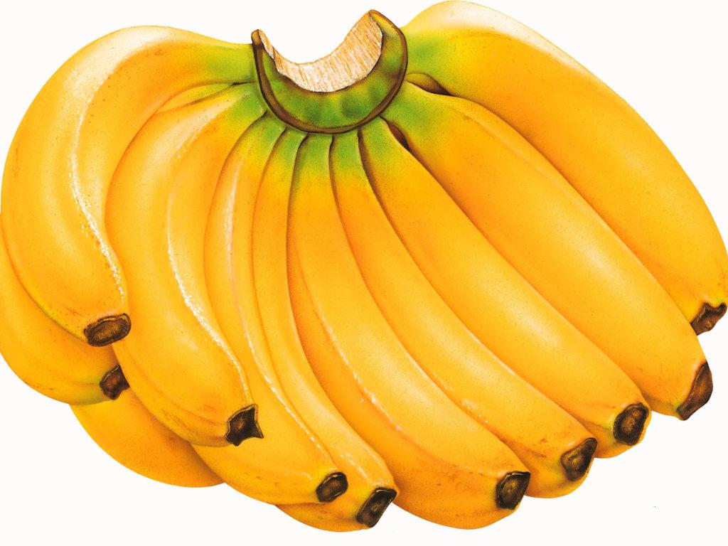 польза бананов при грудном вскармливании