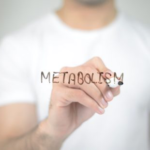 Активизируется метаболизм