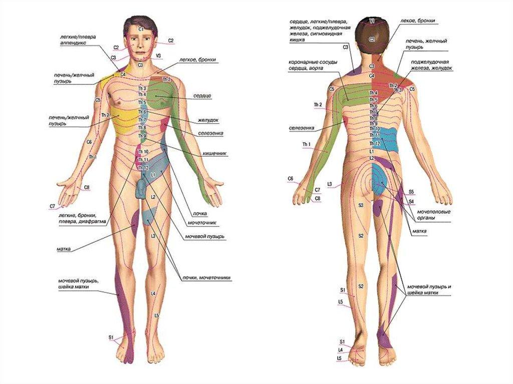 Какие точки массировать при головной боли в картинках, фото и видео