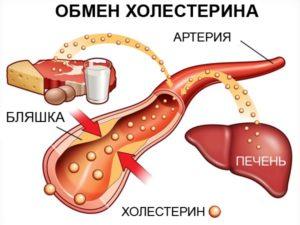 Понижение уровня холестерина