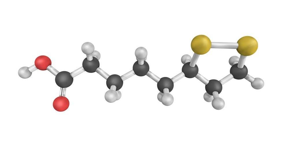 Где встречается альфа-липоевая кислота