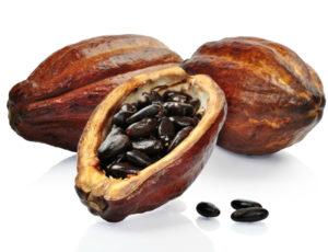 Какао бобов
