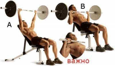 Как сделать массивные мускулистые плечи (упражнения)